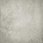 Evoque Grey