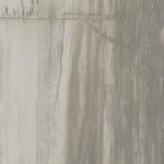 Petrified Wood Grey (2)